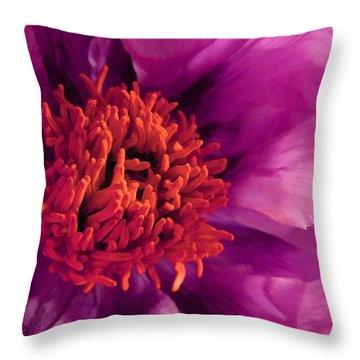 Fuschia Surprise Throw Pillow