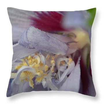 Fuscia Throw Pillow