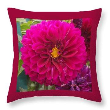Fushia Throw Pillow by Catherine Gagne