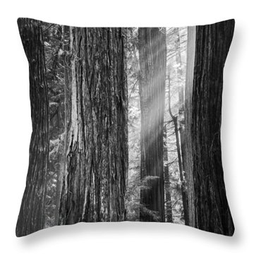 Future Giants Monochrome Throw Pillow