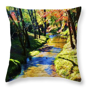 Future Reflections Throw Pillow by Faith Williams