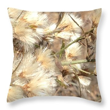 Fuzzy Throw Pillow