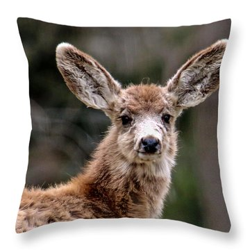 Fuzzy Fawn Throw Pillow