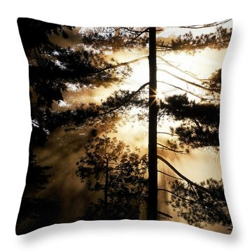Fv5423, Perry Mastrovito Sunrise Though Throw Pillow by Perry Mastrovito