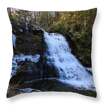 Fwozen Fawz Throw Pillow