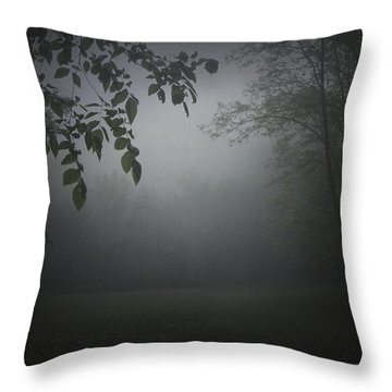 Gaia Cathedral Throw Pillow by Cynthia Lassiter