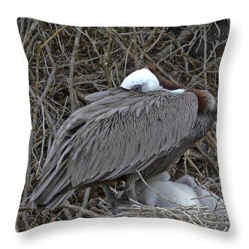 Galapagos - Watchful Pelican Throw Pillow
