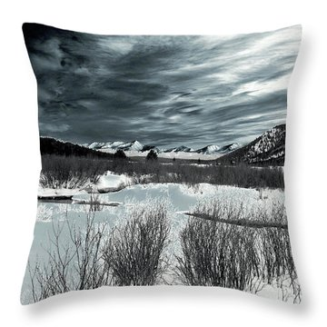 Galvanize Throw Pillow by Jeremy Rhoades