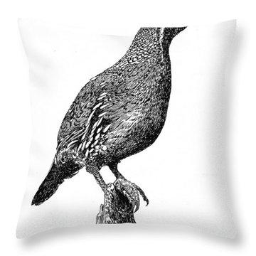 Gambel Quail Throw Pillow by Jack Pumphrey