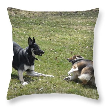 Throw Pillow featuring the photograph Game Over Baby by Luther Fine Art