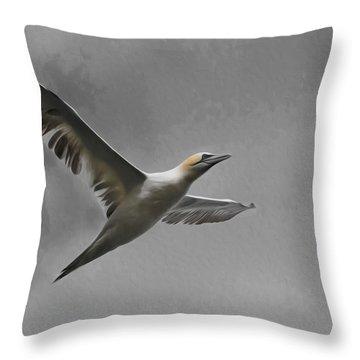 Gannet Throw Pillow