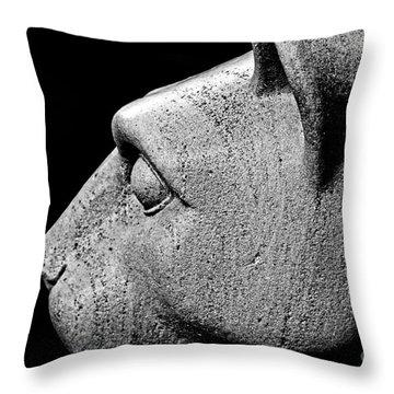 Garatti's Lion Throw Pillow by Tom Gari Gallery-Three-Photography