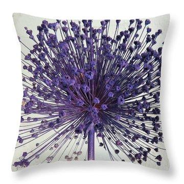 Garden Art Throw Pillow by Jeanette Oberholtzer