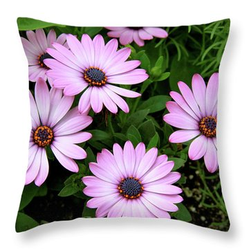 Garden Beauty Throw Pillow by Ed  Riche