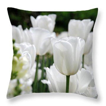 Garden Beauty Throw Pillow by Jennifer Ancker