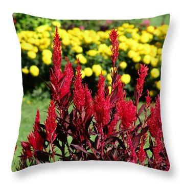 Garden Throw Pillow by Eva Csilla Horvath