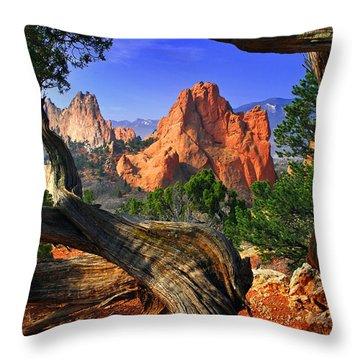 Wind Throw Pillows