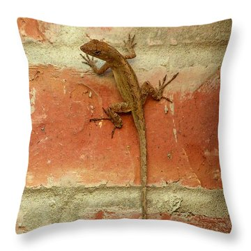Garden Friend Throw Pillow