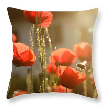 Garden Glow Throw Pillow by Colleen Williams