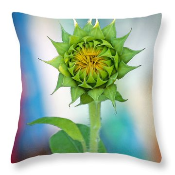 Garden Of Many Colors Throw Pillow by Gwyn Newcombe
