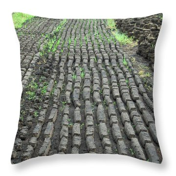 Throw Pillow featuring the photograph Garden Of Peat by Brenda Brown