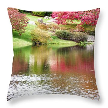 Garden Pond Throw Pillow by Oscar Gutierrez