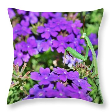 Garden Prayer Throw Pillow