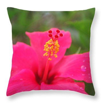Throw Pillow featuring the photograph Garden Rains by Miguel Winterpacht