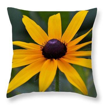 Garden Royalty Throw Pillow