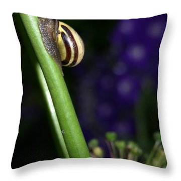 Throw Pillow featuring the photograph Garden Snail by Henry Kowalski
