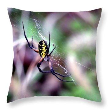 Garden Spider Throw Pillow by Deena Stoddard