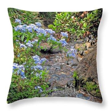 Garden Stream Throw Pillow