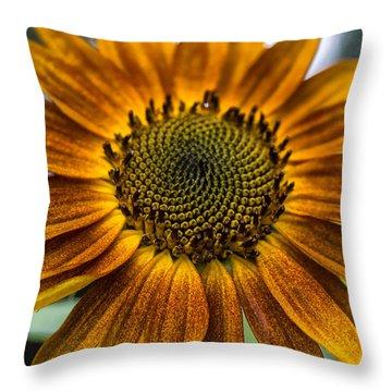 Garden Sunflower Throw Pillow