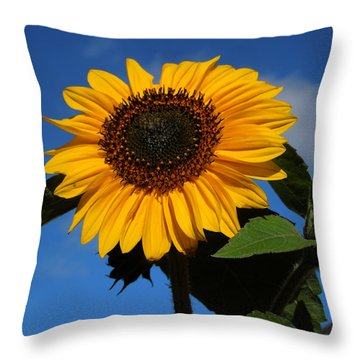 Garden Sunflower October Throw Pillow