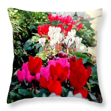 Throw Pillow featuring the photograph Garden Tomb's Flowers 1 by Jason Sentuf