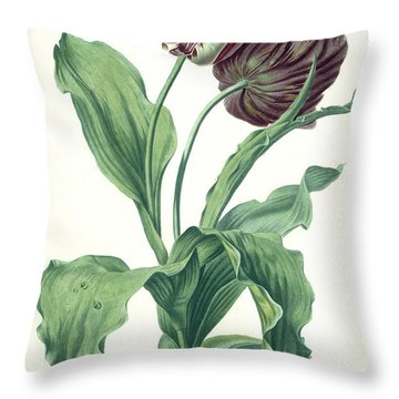 Garden Tulip Throw Pillow