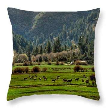 Garden Valley Elk Herd Throw Pillow