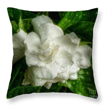 Throw Pillow featuring the photograph Gardenia In The Rain by Myrna Bradshaw