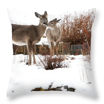 Gardening Throw Pillow by Aaron Aldrich