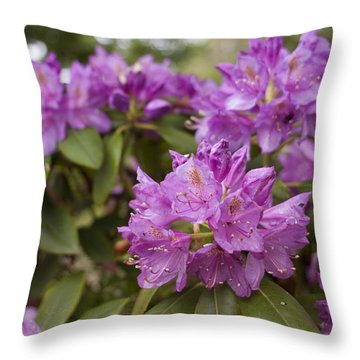 Throw Pillow featuring the photograph Garden's Welcome by Miguel Winterpacht