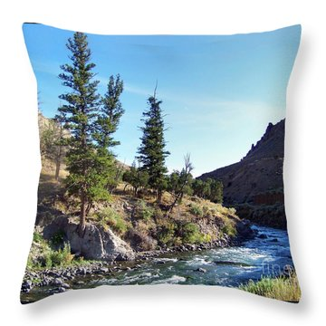 Gardiner River Throw Pillow