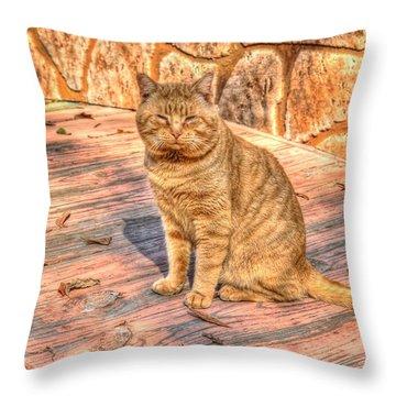 Garfield 01 Throw Pillow