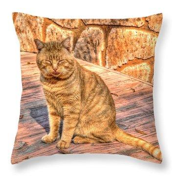 Garfield 02 Throw Pillow