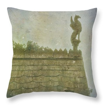 Throw Pillow featuring the photograph Gargoyle by Kandy Hurley