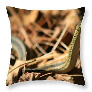 Garter View Throw Pillow by Neal Eslinger