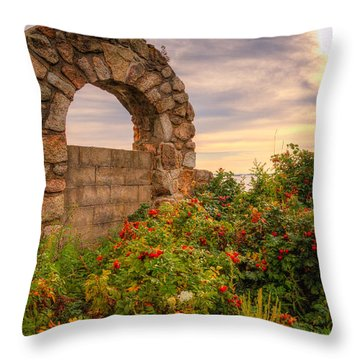 Gate To Nowhere  Throw Pillow by Eti Reid