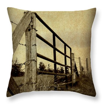 Gated Field Throw Pillow