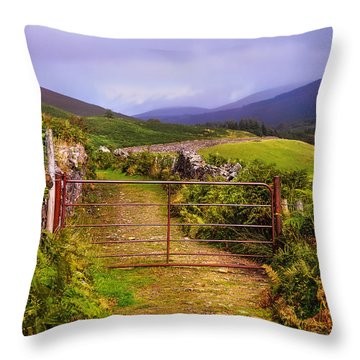 Gates On The Road. Wicklow Hills. Ireland Throw Pillow