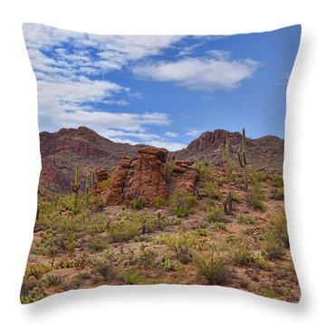 Gates Pass Scenic View Throw Pillow