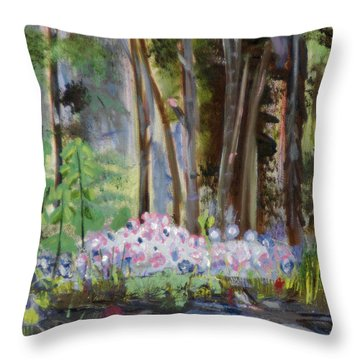 Gateway At The Balsams Throw Pillow